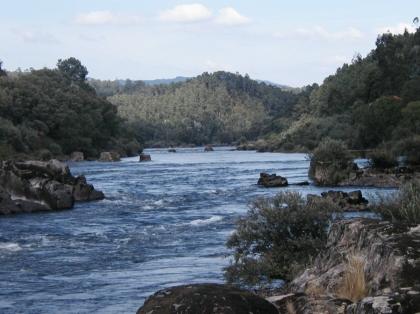 Município conclui limpezas das margens do rio Minho