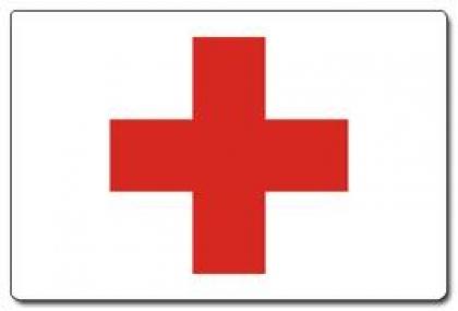 """Direção Nacional da Cruz Vermelha lembra que """"não pode prescindir"""" de gerir os recursos das delegações"""