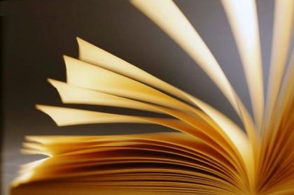 Ensino Superior: Candidaturas a bolsa de estudo abertas até 2 de Novembro