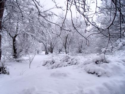Queda de neve suspende aulas