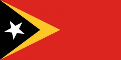 Câmara Municipal apoia Timor-Leste na criação de autarquias
