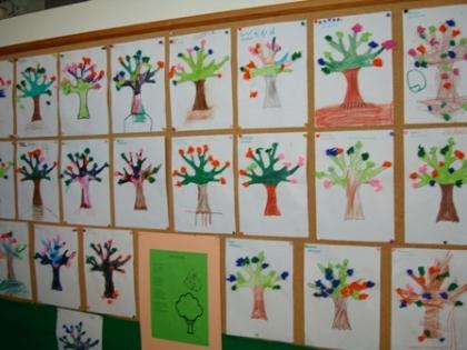 Crise: OUSAM teme diminuição de crianças nos jardins-de-infância