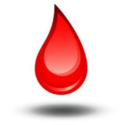 "JS cumpre ""memorando"" com recolha de sangue e de medula óssea este domingo"