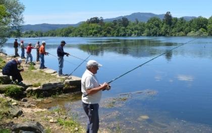 III Festa da Savelha: Organização reclama promoção idêntica à da lampreia e sável pelas entidades