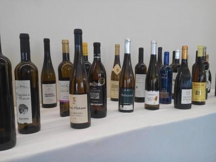 Melgaço: Autarquia diz que Cidade Europeia do Vinho vai ajudar à promoção da sub-região