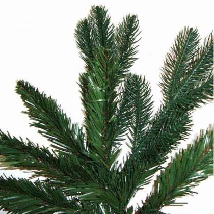 Cerveira: Câmara oferece pinheiros de Natal a partir desta segunda-feira