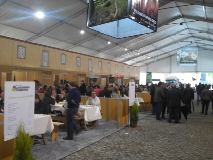 Melgaço: Presidente da Associação Nacional de Municípios vai abrir a Festa do Alvarinho