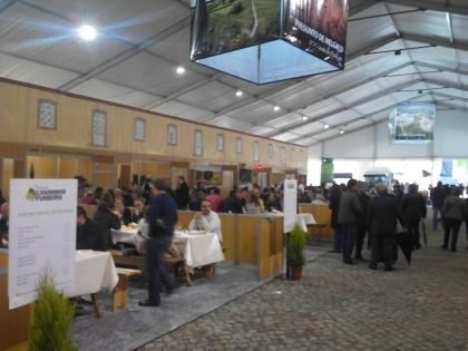 Melgaço: Festa do Alvarinho esgota quartos no concelho e nas proximidades