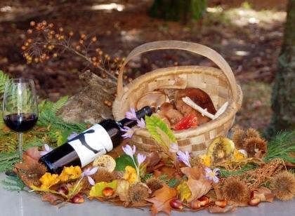 Paredes de Coura: Mais de uma dezena de restaurantes 'servem' Outono este fim-de-semana