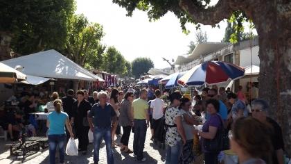 Monção: Câmara vai atribuir três lugares na feira semanal