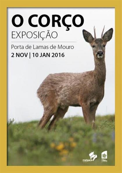 Melgaço: Porta de Lamas de Mouro recebe exposição intitulada 'O Corço'