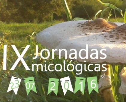 Paredes de Coura realiza IX edição das Jornadas Micológicas no dia 23