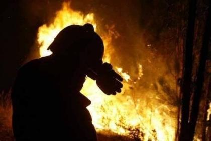 Paredes de Coura: CEIA afetado pelas chamas / Danos 'ao nível do telhado'