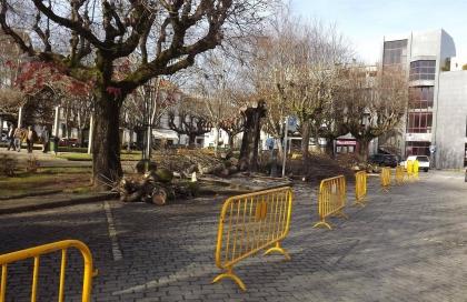 Monção: Câmara abate árvores na Praça da República e Praça Deu-la-Deu