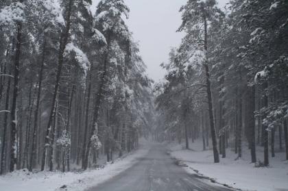 Melgaço/Castro Laboreiro: Queda de neve deverá prolongar-se nas próximas horas