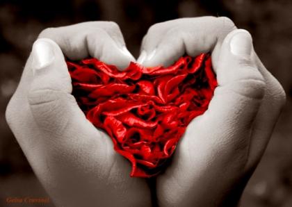 Autarquia e empresários decoram vila com corações alusivos ao Dia de São Valentim