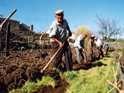 Relatório do Governo indica que sementeiras da primavera estão em risco