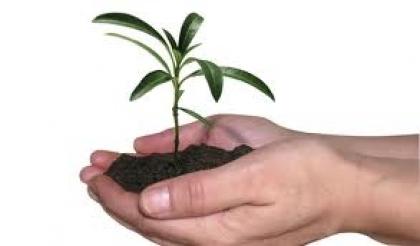 Politécnico assinala a Primavera com plantação de árvores pela Academia Sénior