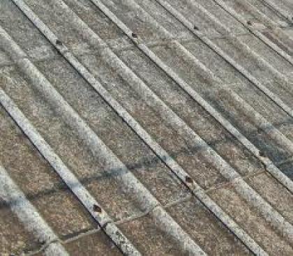 Barcelos: Pais alertam para degradação de cobertura de amianto em escola