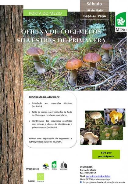 ARDAL promove oficina de Cogumelos Silvestres de Primavera