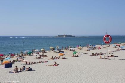Caminha: Praias de Moledo e Foz do Minho acolhem atividade sobre 'Flora Dunar' este sábado
