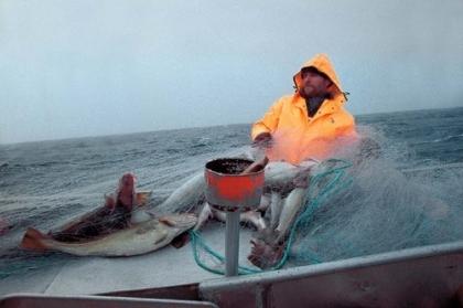 Âncora: 'Viagens à Terra Nova' começa esta sexta-feira