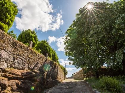 Caminha: Autarquia promove percurso pedestre «Caminho da Natureza» no próximo domingo